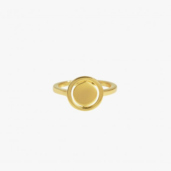 Turn Around Spinning Gold Ring | The Collaborative Store