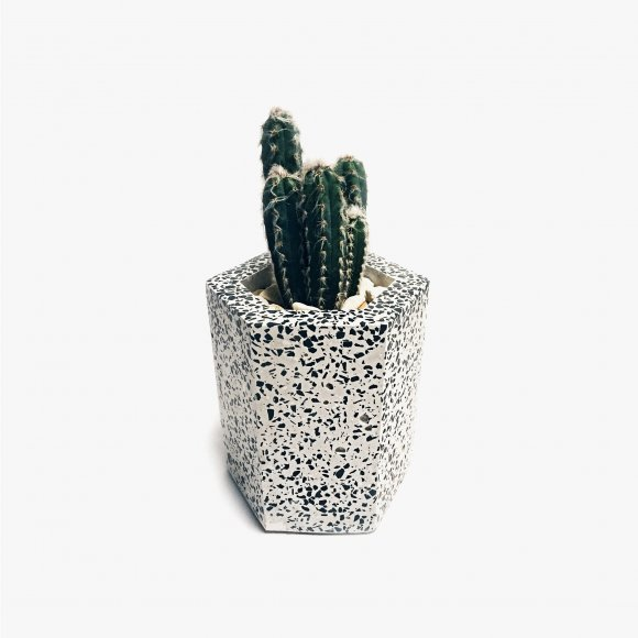 Hexagonal Terrazzo Pot | The Collaborative Store